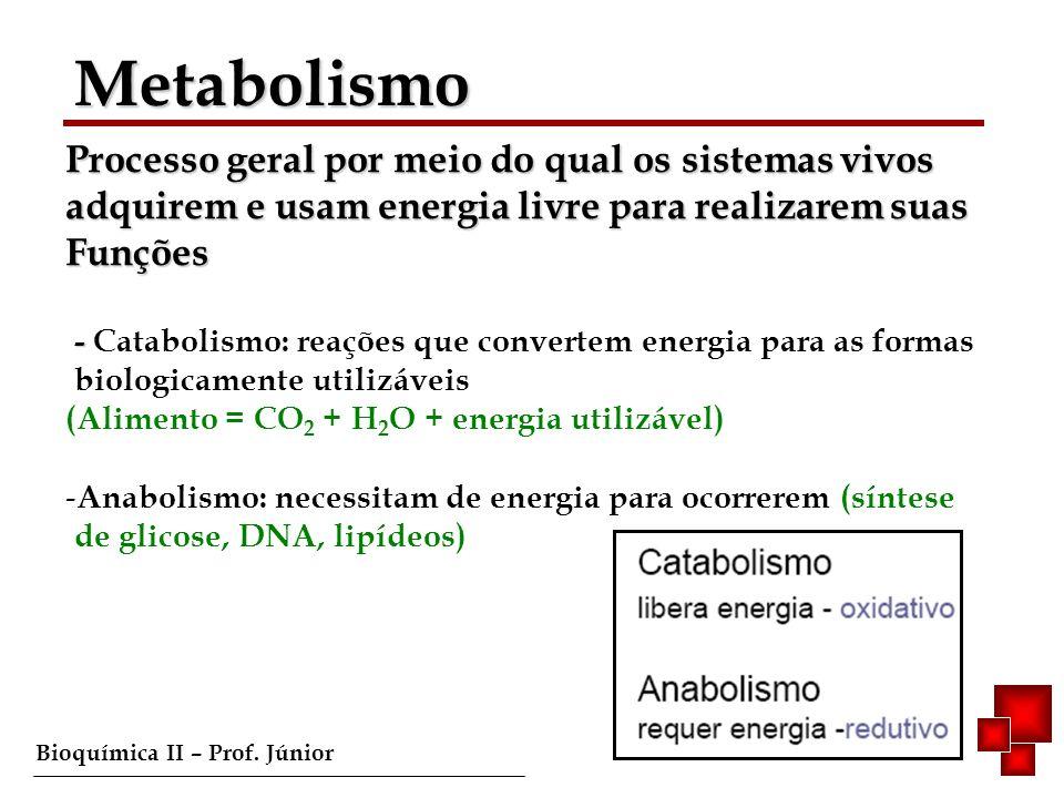 Metabolismo Processo geral por meio do qual os sistemas vivos