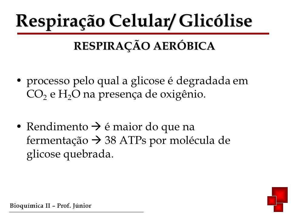 Respiração Celular/ Glicólise