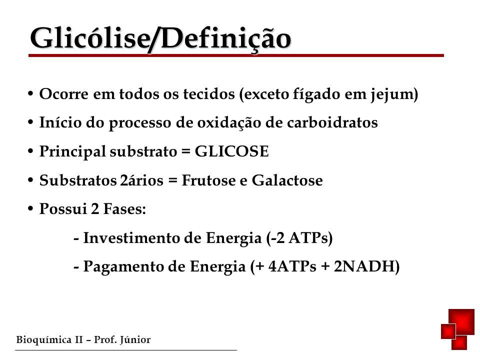 Glicólise/Definição Ocorre em todos os tecidos (exceto fígado em jejum) Início do processo de oxidação de carboidratos.