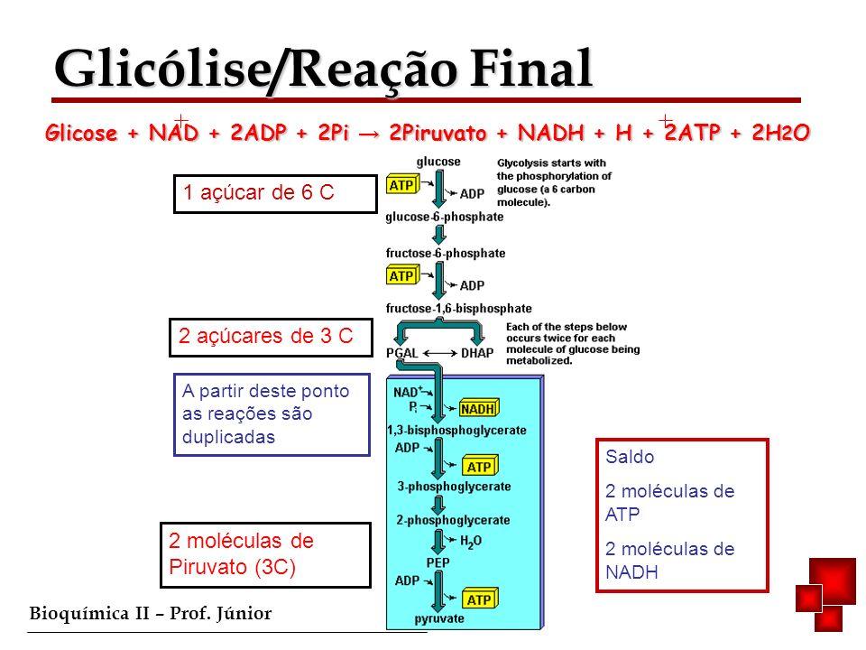 Glicólise/Reação Final