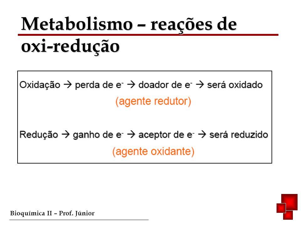 Metabolismo – reações de oxi-redução