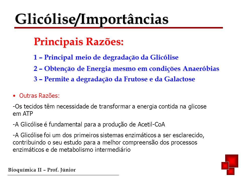 Glicólise/Importâncias