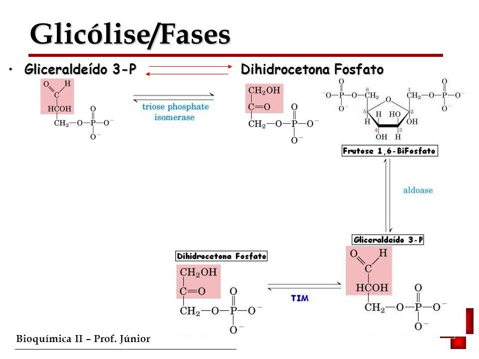 Glicólise/Fases Gliceraldeído 3-P Dihidrocetona Fosfato