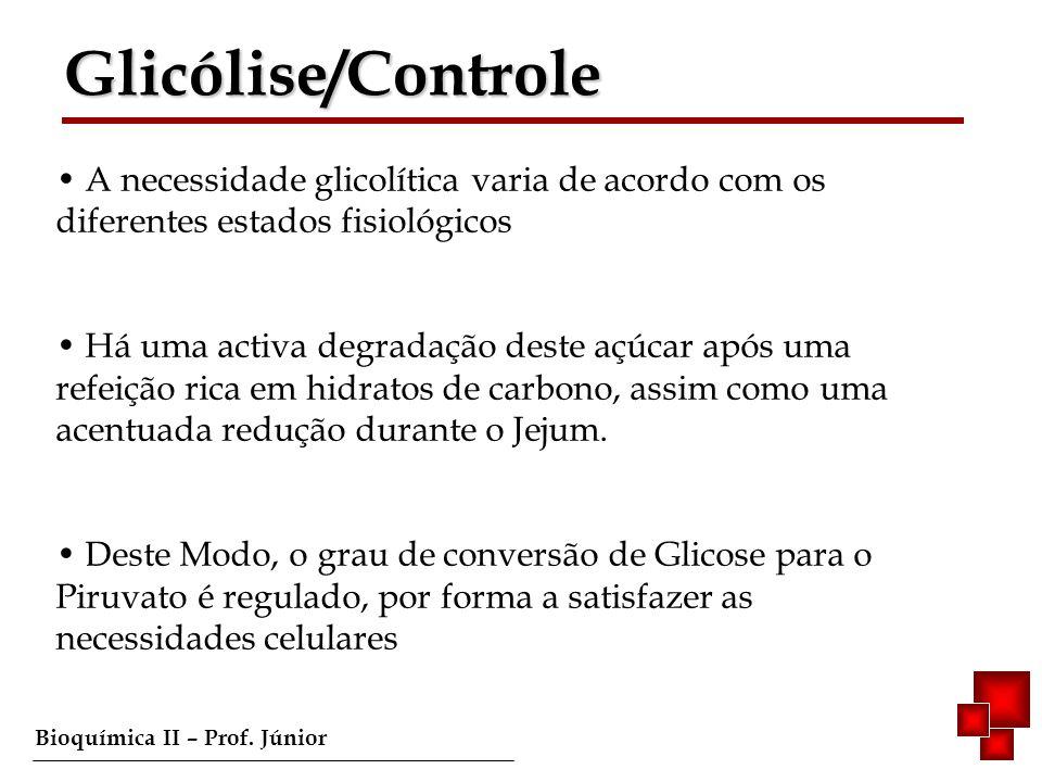 Glicólise/Controle A necessidade glicolítica varia de acordo com os diferentes estados fisiológicos.