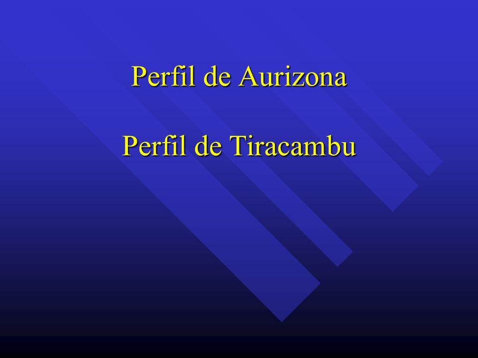 Perfil de Aurizona Perfil de Tiracambu
