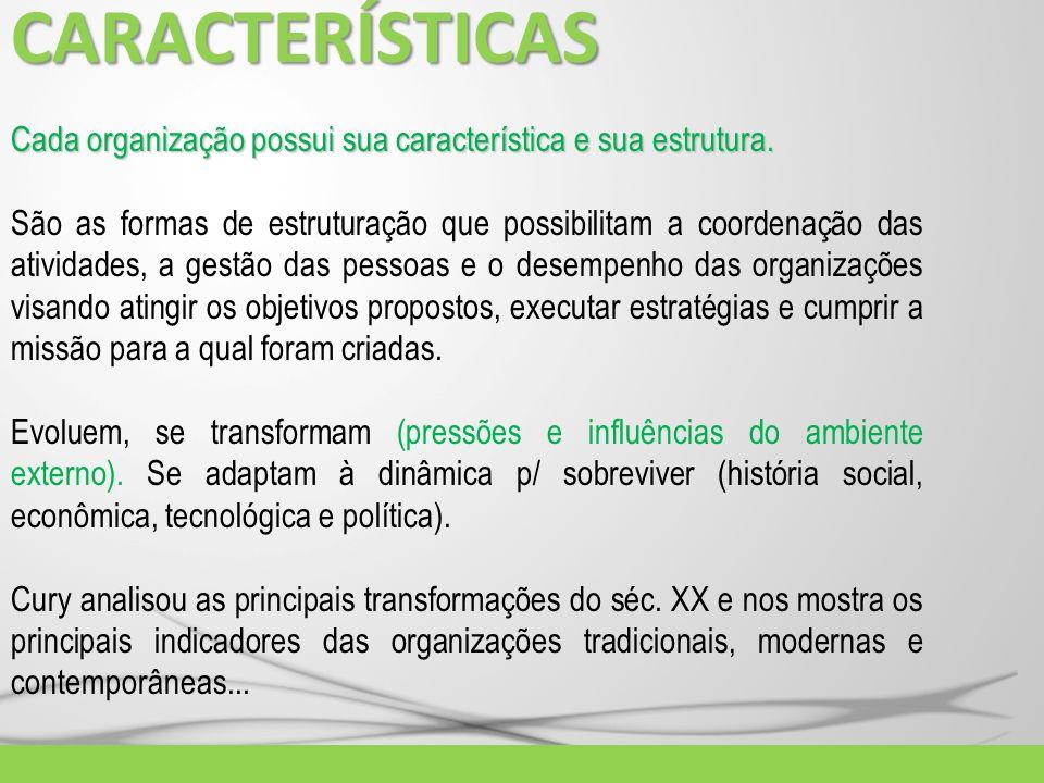 CARACTERÍSTICASCada organização possui sua característica e sua estrutura.