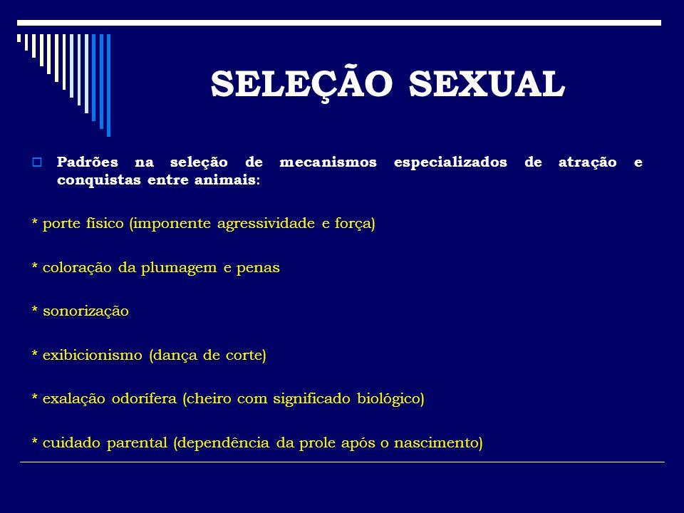 SELEÇÃO SEXUAL Padrões na seleção de mecanismos especializados de atração e conquistas entre animais: