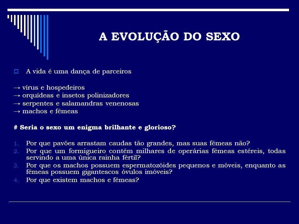 A EVOLUÇÃO DO SEXO A vida é uma dança de parceiros