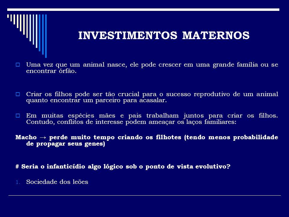 INVESTIMENTOS MATERNOS