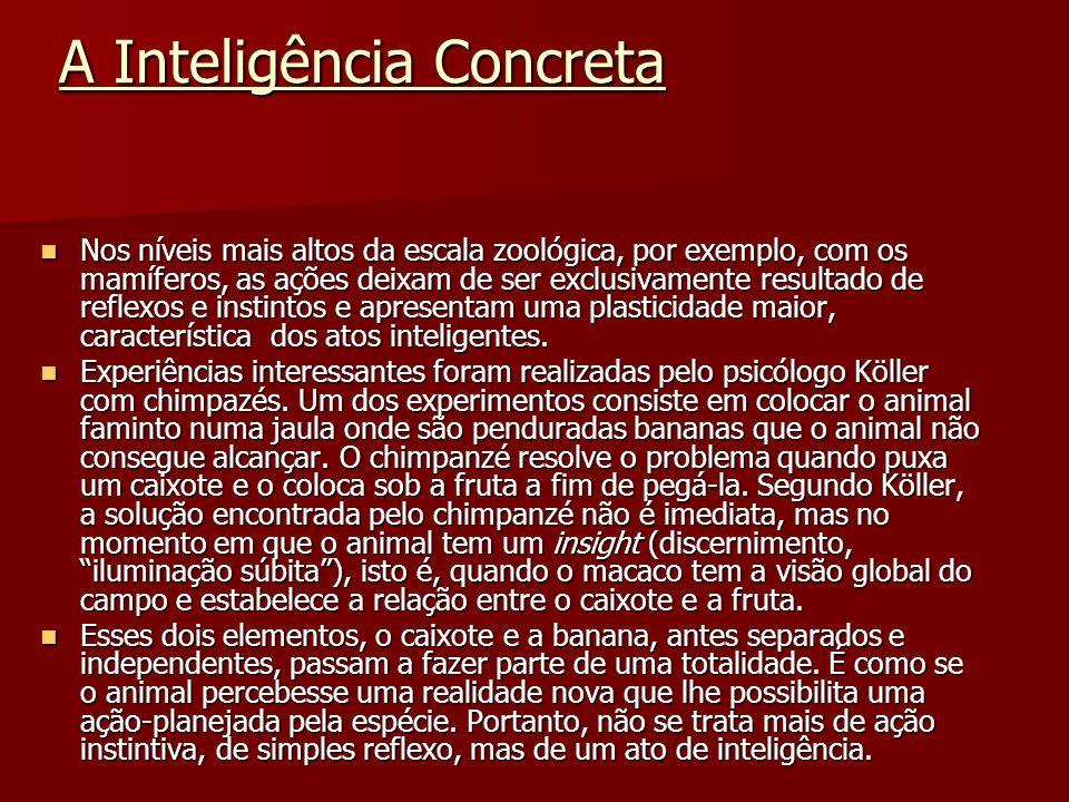 A Inteligência Concreta