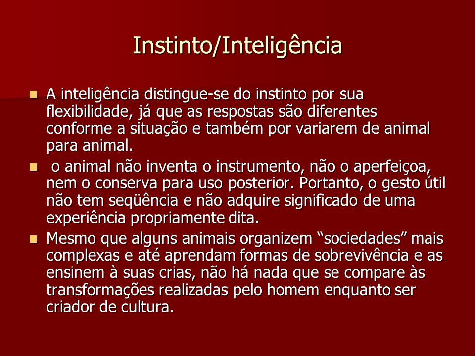 Instinto/Inteligência
