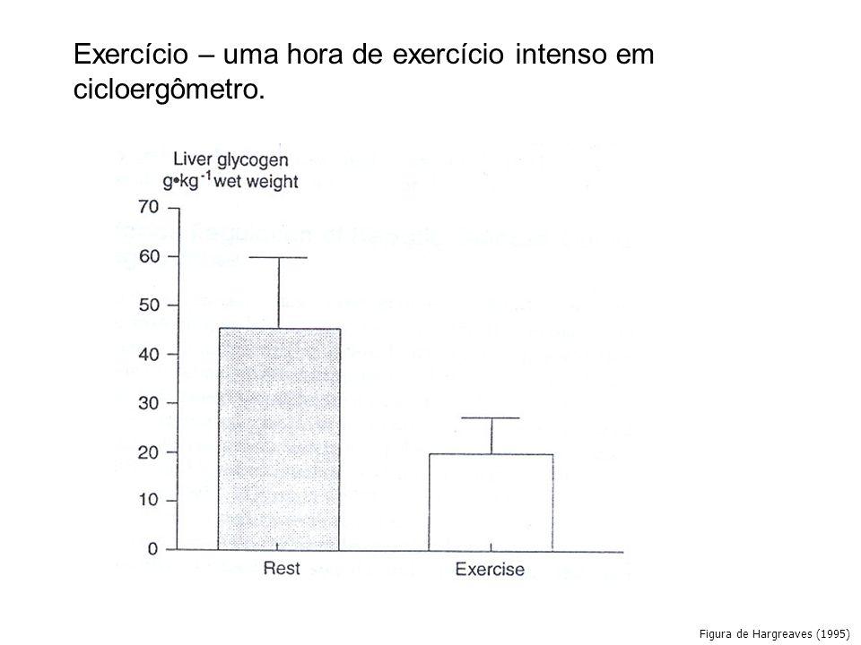 Exercício – uma hora de exercício intenso em cicloergômetro.