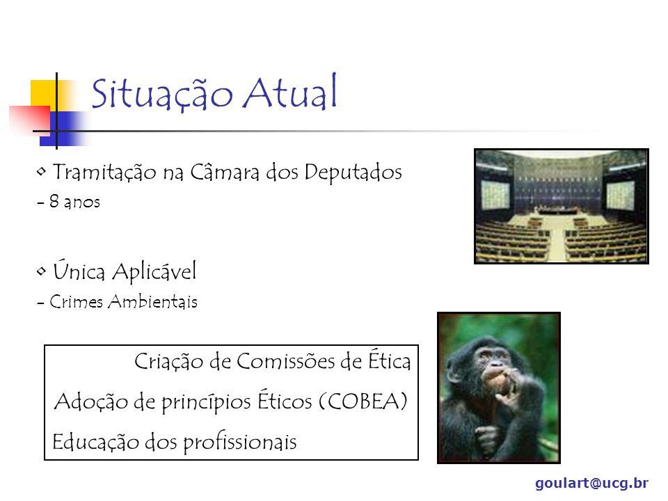 Adoção de princípios Éticos (COBEA)