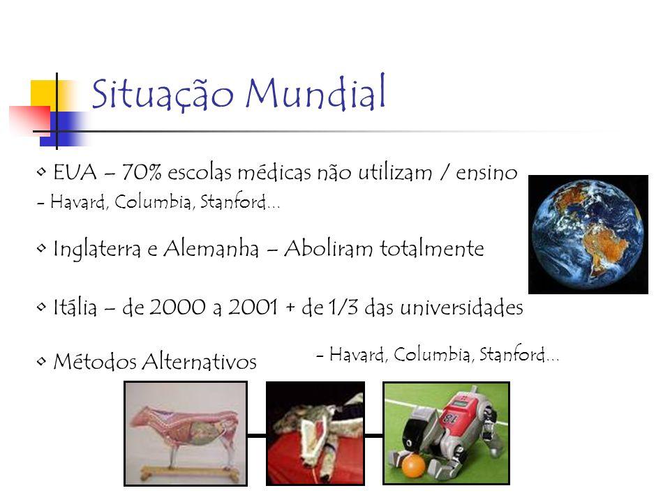 Situação Mundial EUA – 70% escolas médicas não utilizam / ensino