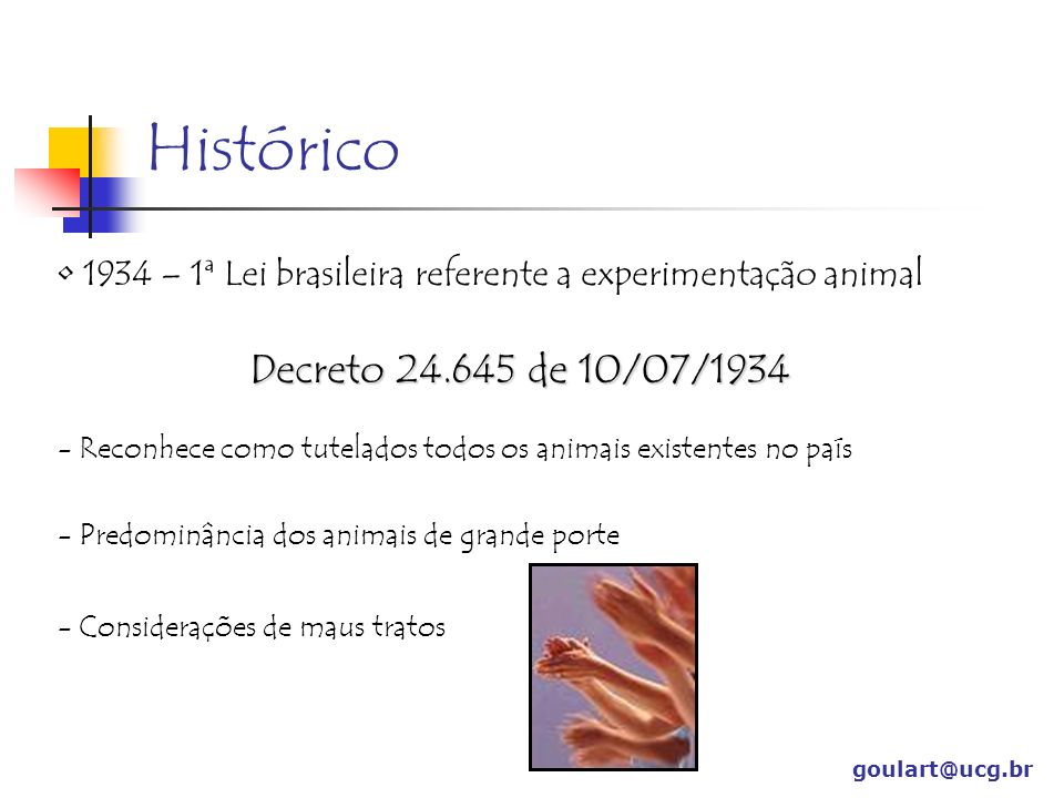 Histórico Decreto 24.645 de 10/07/1934