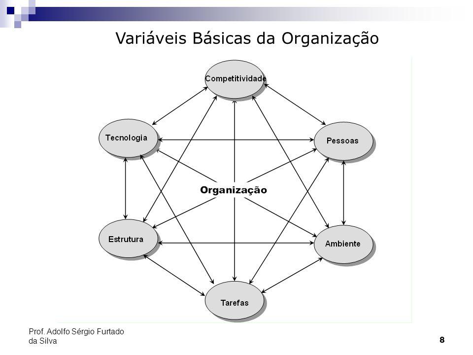 Variáveis Básicas da Organização
