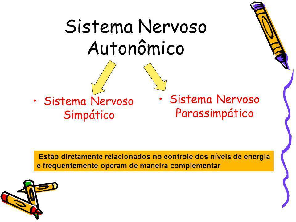 Sistema Nervoso Autonômico