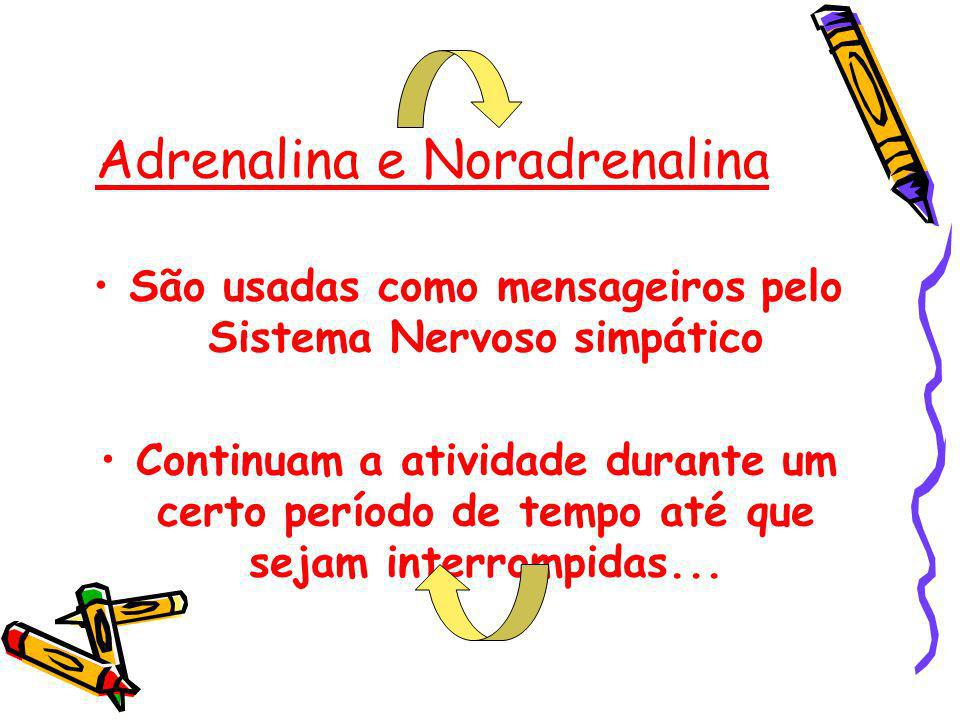 Adrenalina e Noradrenalina