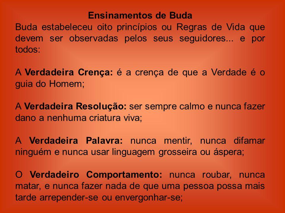 Ensinamentos de Buda Buda estabeleceu oito princípios ou Regras de Vida que devem ser observadas pelos seus seguidores... e por todos: