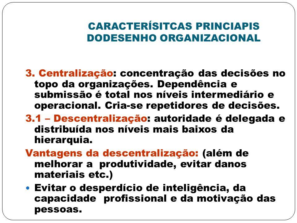 CARACTERÍSITCAS PRINCIAPIS DODESENHO ORGANIZACIONAL