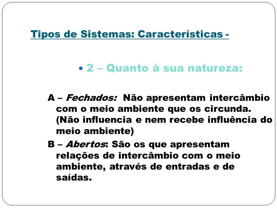 Tipos de Sistemas: Características -
