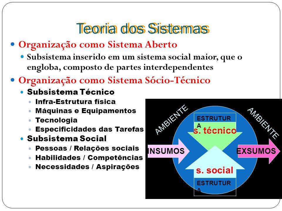 Teoria dos Sistemas Organização como Sistema Aberto