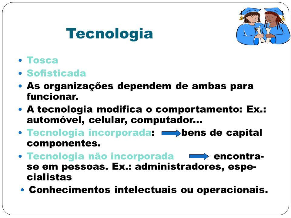 Conhecimentos intelectuais ou operacionais.