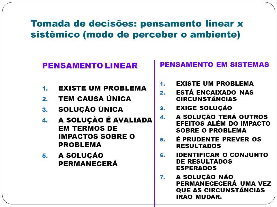 Tomada de decisões: pensamento linear x sistêmico (modo de perceber o ambiente)