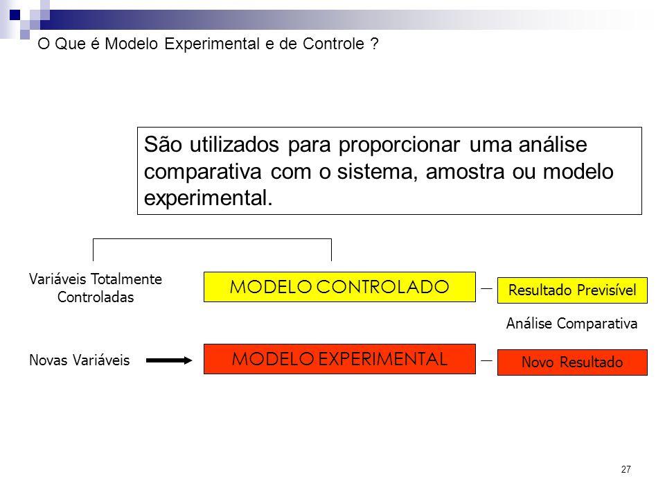 O Que é Modelo Experimental e de Controle