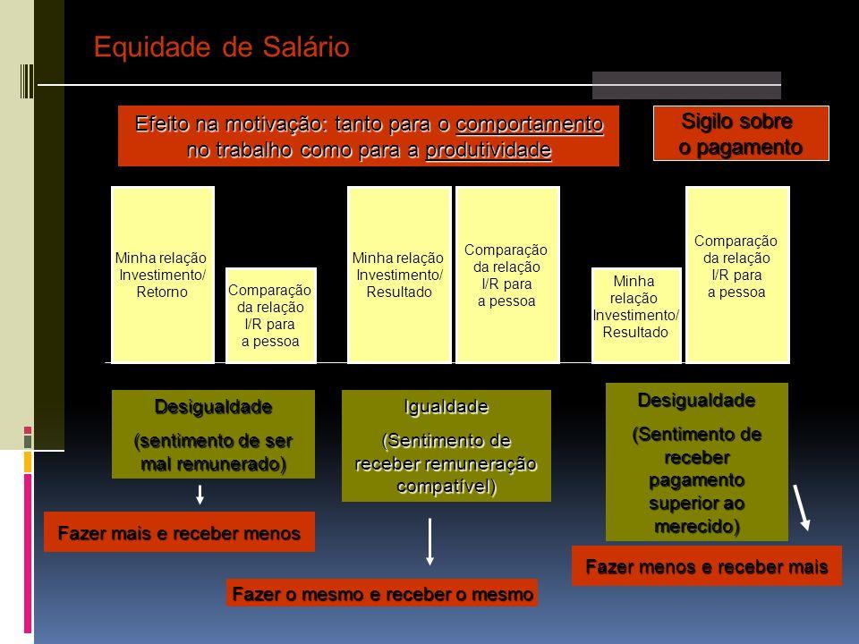Equidade de Salário Efeito na motivação: tanto para o comportamento no trabalho como para a produtividade.