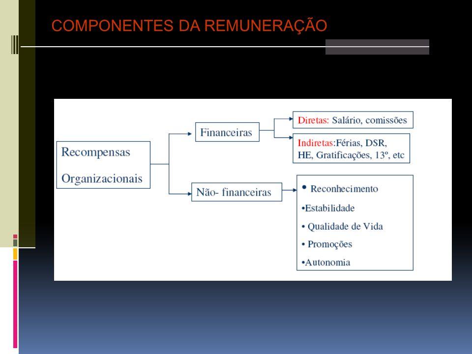 COMPONENTES DA REMUNERAÇÃO