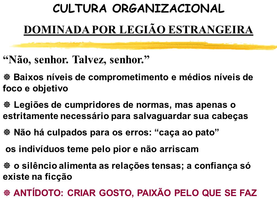 CULTURA ORGANIZACIONAL DOMINADA POR LEGIÃO ESTRANGEIRA