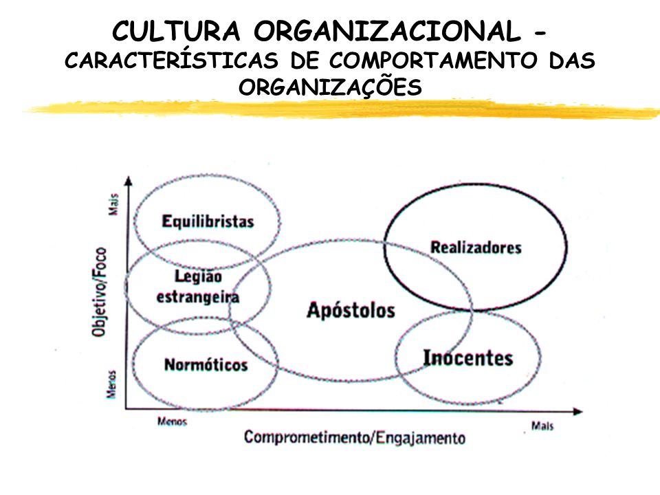 CULTURA ORGANIZACIONAL - CARACTERÍSTICAS DE COMPORTAMENTO DAS ORGANIZAÇÕES