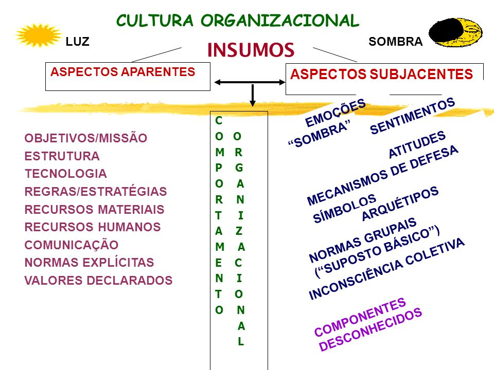 CULTURA ORGANIZACIONAL