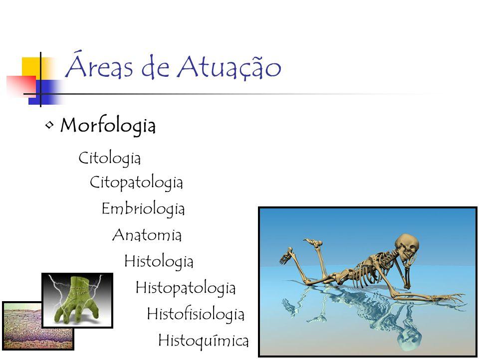 Áreas de Atuação Morfologia Citologia Citopatologia Embriologia