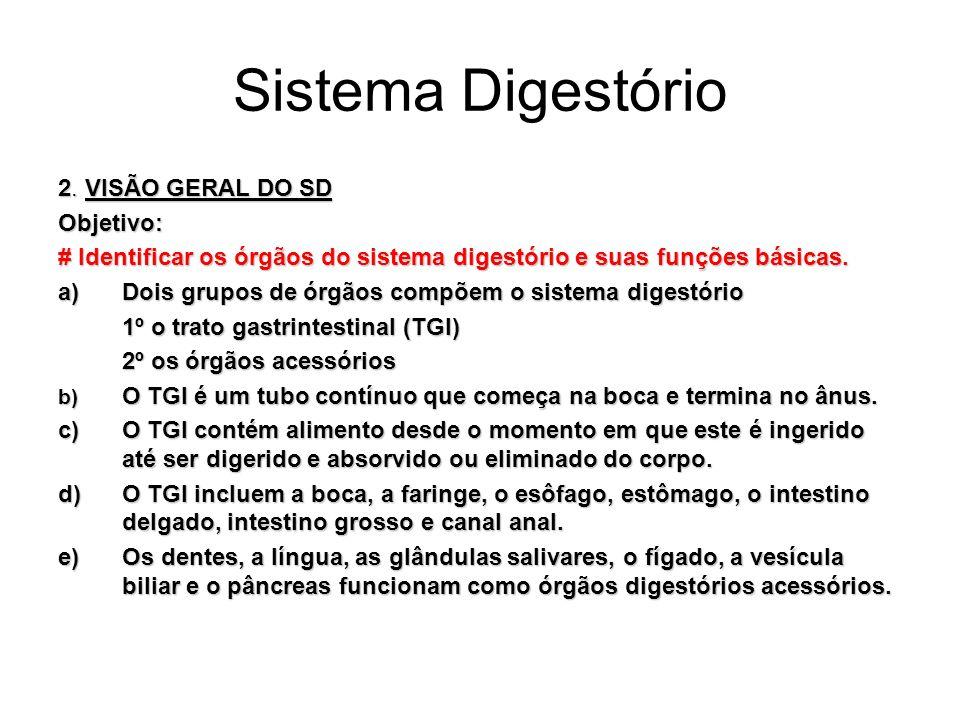 Sistema Digestório 2. VISÃO GERAL DO SD Objetivo: