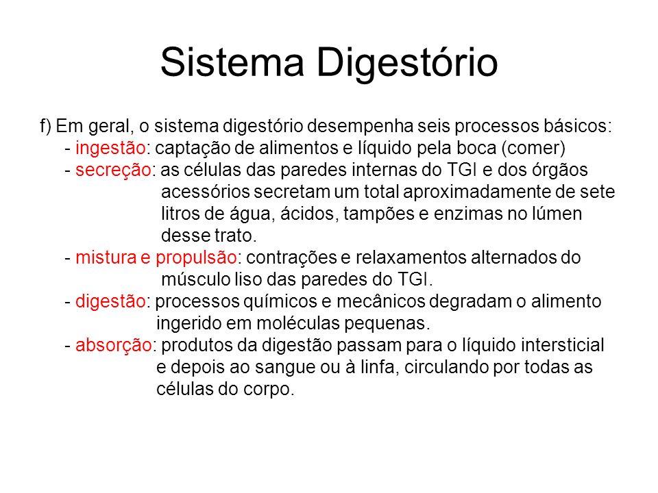 Sistema Digestóriof) Em geral, o sistema digestório desempenha seis processos básicos: - ingestão: captação de alimentos e líquido pela boca (comer)
