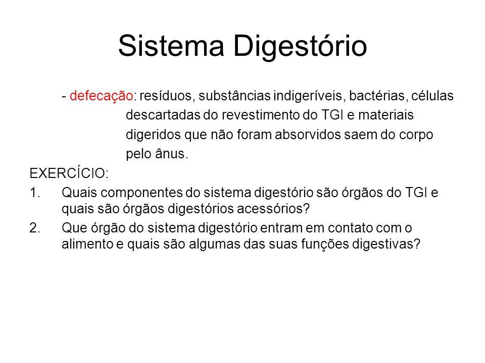 Sistema Digestório- defecação: resíduos, substâncias indigeríveis, bactérias, células. descartadas do revestimento do TGI e materiais.