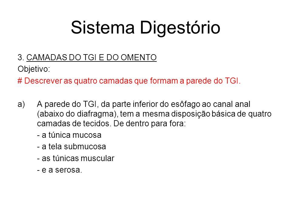 Sistema Digestório 3. CAMADAS DO TGI E DO OMENTO Objetivo: