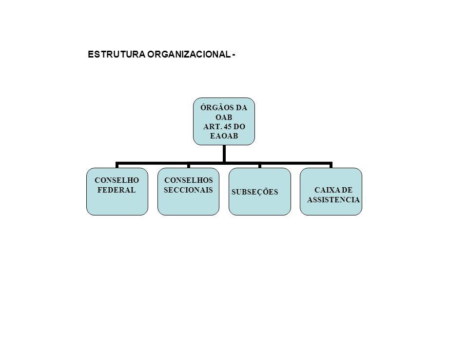 ESTRUTURA ORGANIZACIONAL -