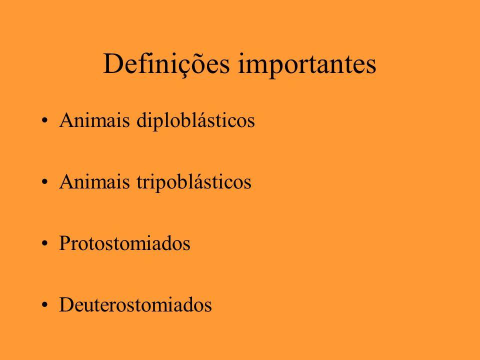 Definições importantes