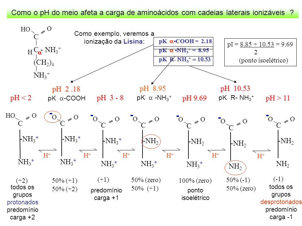 Como o pH do meio afeta a carga de aminoácidos com cadeias laterais ionizáveis