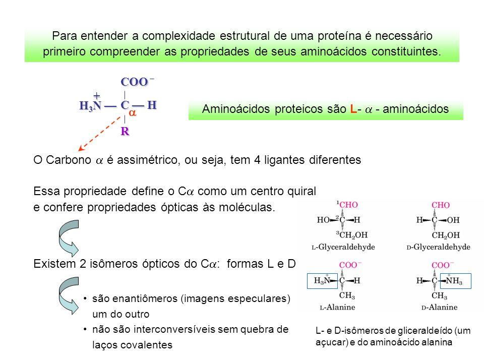Aminoácidos proteicos são L- a - aminoácidos