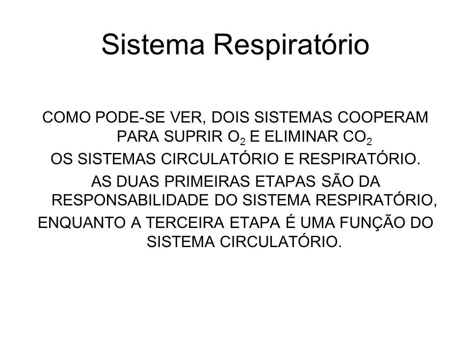 Sistema Respiratório COMO PODE-SE VER, DOIS SISTEMAS COOPERAM PARA SUPRIR O2 E ELIMINAR CO2. OS SISTEMAS CIRCULATÓRIO E RESPIRATÓRIO.