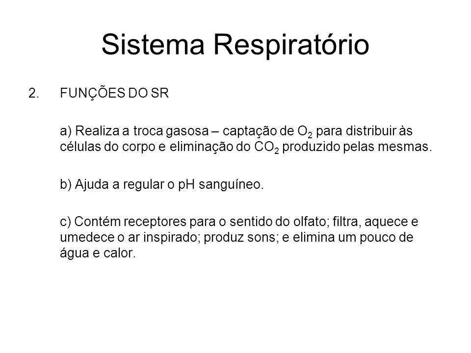 Sistema Respiratório FUNÇÕES DO SR