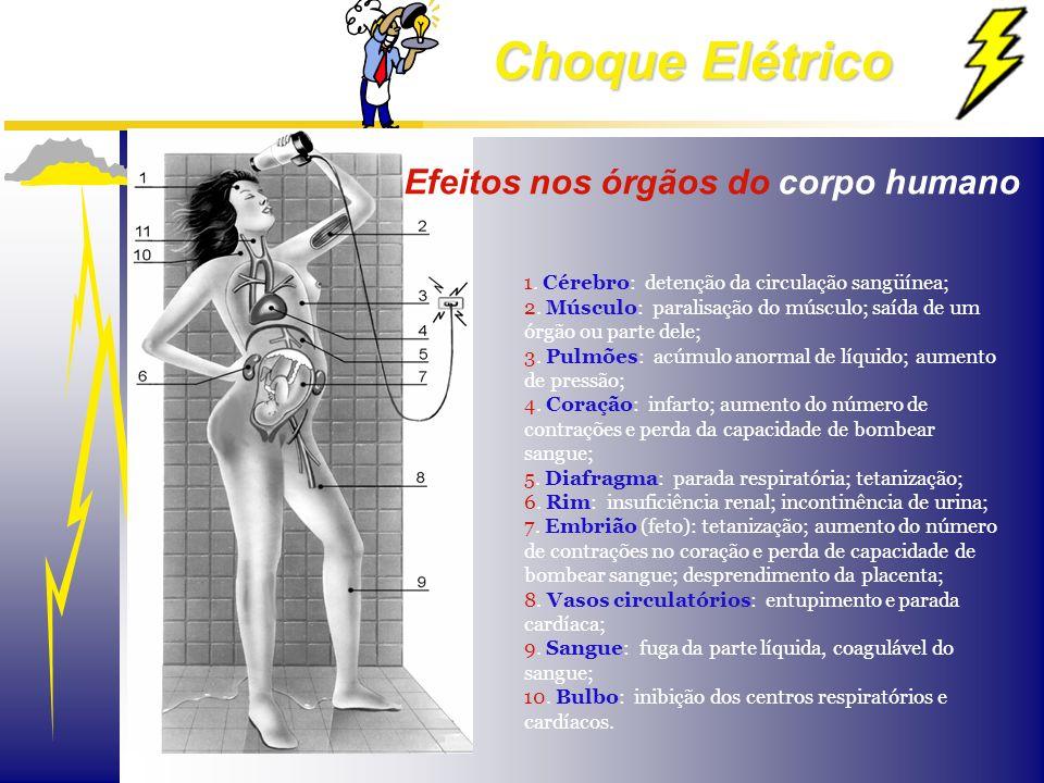Efeitos nos órgãos do corpo humano