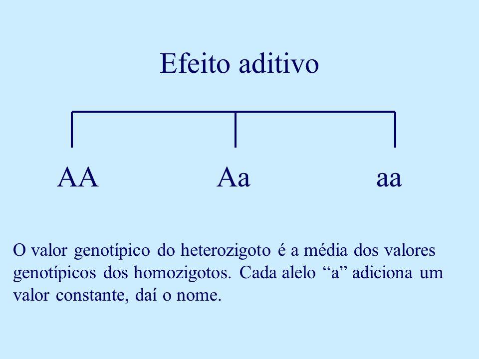 Efeito aditivo AA. Aa. aa.