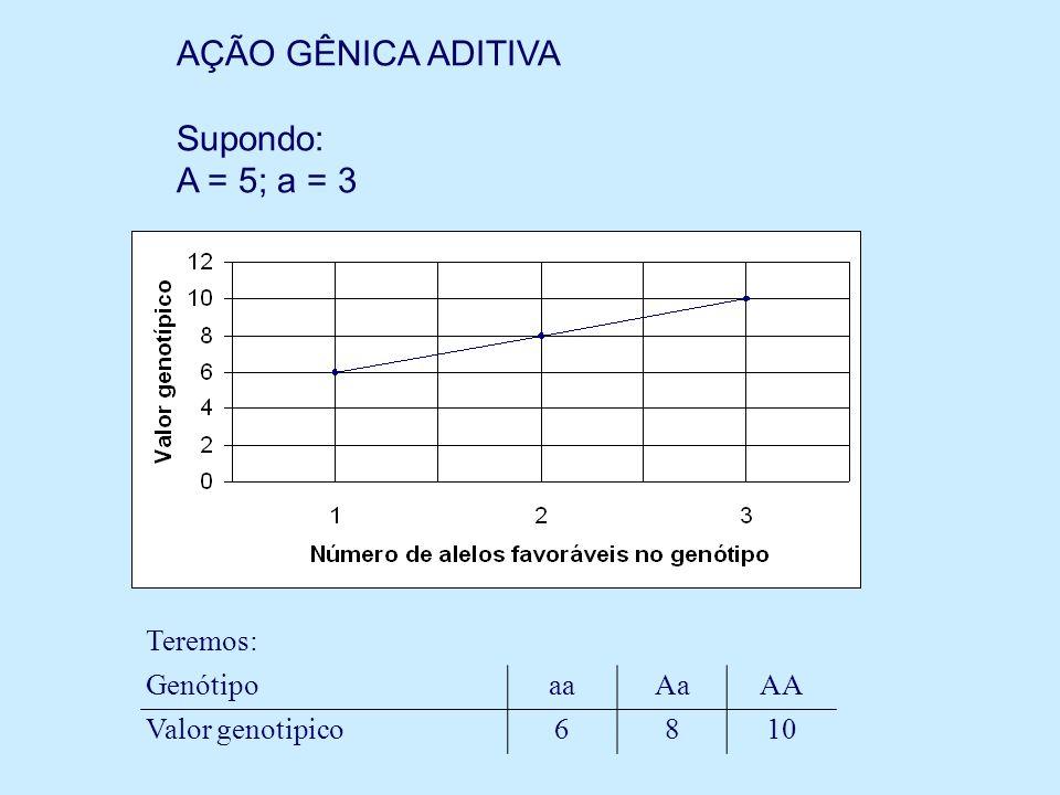 AÇÃO GÊNICA ADITIVA Supondo: A = 5; a = 3 Teremos: Genótipo aa Aa AA
