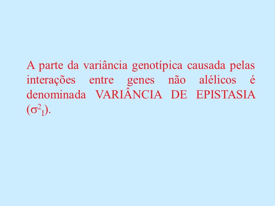 A parte da variância genotípica causada pelas interações entre genes não alélicos é denominada VARIÂNCIA DE EPISTASIA (2I).