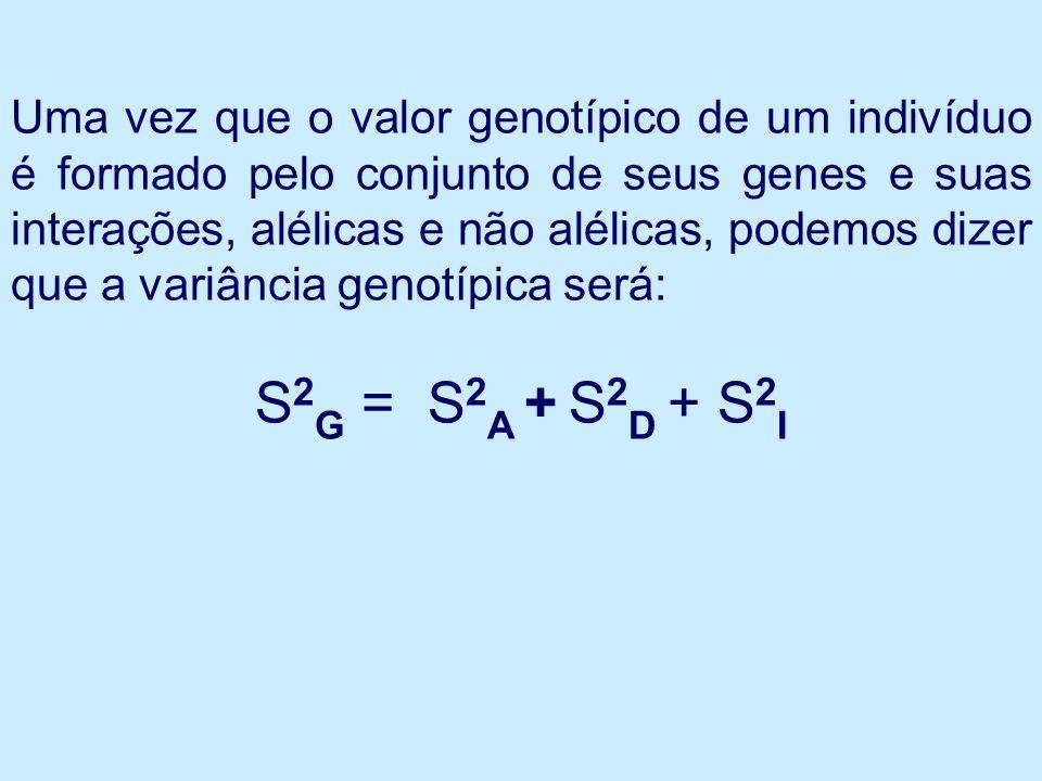 Uma vez que o valor genotípico de um indivíduo é formado pelo conjunto de seus genes e suas interações, alélicas e não alélicas, podemos dizer que a variância genotípica será: